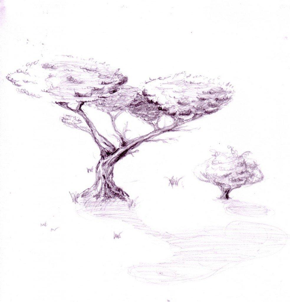 Arbre au Sud dans PostIt arbre_extrait-1600x1200